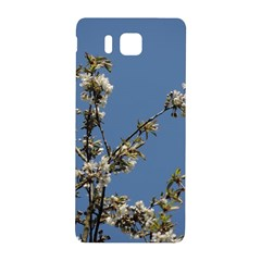 White Cherry Flowers And Blue Sky Samsung Galaxy Alpha Hardshell Back Case by picsaspassion