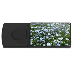 Blue Forget Me Not Flowers Usb Flash Drive Rectangular (4 Gb)  by picsaspassion