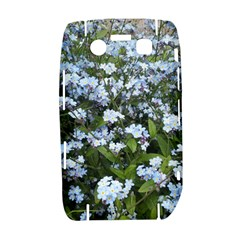 Blue Forget-me-not flowers Bold 9700 by picsaspassion