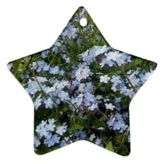 Little Blue Forget Me Not Flowers Star Ornament (two Sides)  by picsaspassion