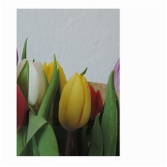 Colorful bouquet Tulips Large Garden Flag (Two Sides) by picsaspassion
