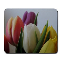 Colored By Tulips Large Mousepads by picsaspassion