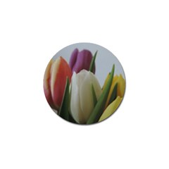 Colored By Tulips Golf Ball Marker (4 Pack) by picsaspassion