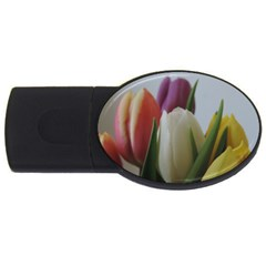 Colored By Tulips Usb Flash Drive Oval (4 Gb)  by picsaspassion