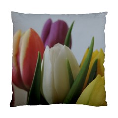 Colored By Tulips Standard Cushion Case (one Side) by picsaspassion