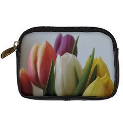 Colored By Tulips Digital Camera Cases by picsaspassion