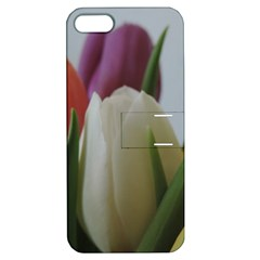 Colored By Tulips Apple Iphone 5 Hardshell Case With Stand by picsaspassion