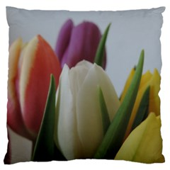 Colored By Tulips Standard Flano Cushion Case (one Side) by picsaspassion