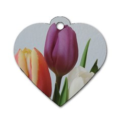 Tulip Spring Flowers Dog Tag Heart (one Side) by picsaspassion