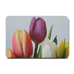 Tulip Spring Flowers Small Doormat  by picsaspassion