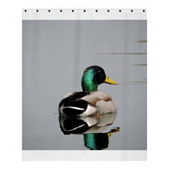 Swimming Duck Shower Curtain 60  X 72  (medium)  by picsaspassion