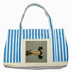 Wild Duck Swimming In Lake Striped Blue Tote Bag by picsaspassion