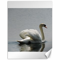 Swimming White Swan Canvas 12  X 16