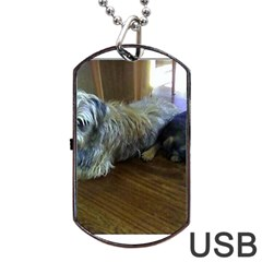 Border Terrier Brothers Dog Tag Usb Flash (two Sides)  by TailWags