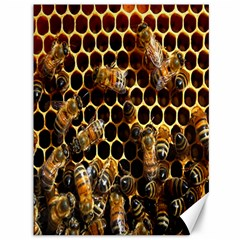 Bees On A Comb Canvas 36  X 48   by AnjaniArt