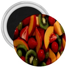 Fruit Salad 3  Magnets by AnjaniArt