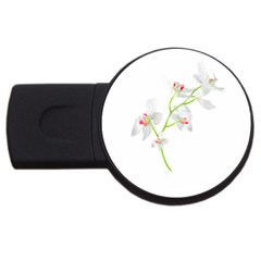 Isolated Orquideas Blossom Usb Flash Drive Round (2 Gb)  by dflcprints