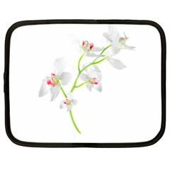Isolated Orquideas Blossom Netbook Case (xl)  by dflcprints
