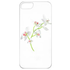 Isolated Orquideas Blossom Apple Iphone 5 Classic Hardshell Case by dflcprints