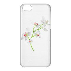 Isolated Orquideas Blossom Apple Iphone 5c Hardshell Case by dflcprints