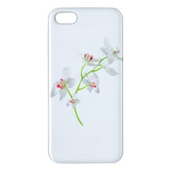 Isolated Orquideas Blossom Iphone 5s/ Se Premium Hardshell Case by dflcprints