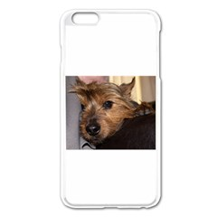 Norwich Terrier Chillin Apple iPhone 6 Plus/6S Plus Enamel White Case by TailWags