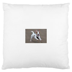 Jack Russell Terrier Running 2 Large Cushion Case (One Side) by TailWags