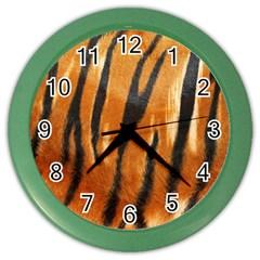 Tiger Color Wall Clocks