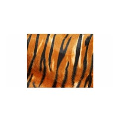 Tiger Satin Wrap
