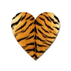 Tiger Skin Heart Magnet by AnjaniArt