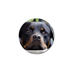 Rottweiler 2 Golf Ball Marker by TailWags