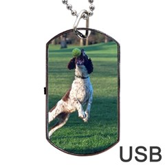 English Springer Catching Ball Dog Tag USB Flash (One Side) by TailWags