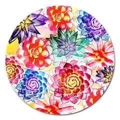 Colorful Succulents Magnet 5  (round) by DanaeStudio