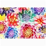 Colorful Succulents Collage Prints 18 x12 Print - 1
