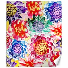 Colorful Succulents Canvas 8  X 10  by DanaeStudio