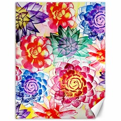 Colorful Succulents Canvas 12  X 16   by DanaeStudio