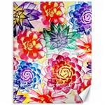 Colorful Succulents Canvas 12  x 16