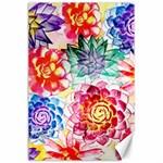Colorful Succulents Canvas 24  x 36