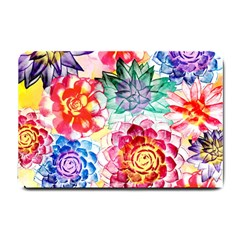 Colorful Succulents Small Doormat  by DanaeStudio