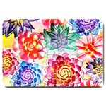 Colorful Succulents Large Doormat  30 x20 Door Mat - 1