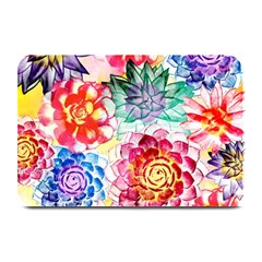 Colorful Succulents Plate Mats by DanaeStudio