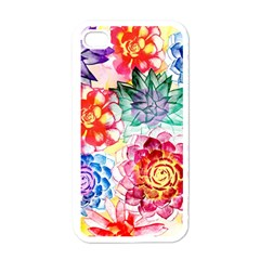 Colorful Succulents Apple Iphone 4 Case (white) by DanaeStudio