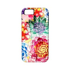 Colorful Succulents Apple Iphone 5 Classic Hardshell Case (pc+silicone) by DanaeStudio