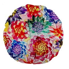 Colorful Succulents Large 18  Premium Round Cushions by DanaeStudio