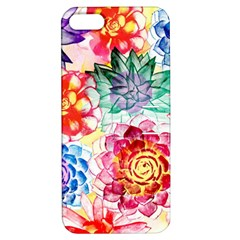 Colorful Succulents Apple Iphone 5 Hardshell Case With Stand by DanaeStudio