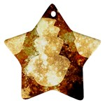 Sparkling Lights Ornament (Star)