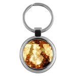 Sparkling Lights Key Chains (Round)