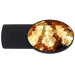 Sparkling Lights USB Flash Drive Oval (2 GB)