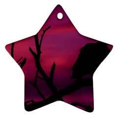 Vultures At Top Of Tree Silhouette Illustration Star Ornament (two Sides)  by dflcprints