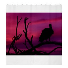 Vultures At Top Of Tree Silhouette Illustration Shower Curtain 66  X 72  (large)  by dflcprints